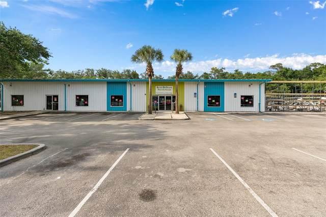 1100 Americana Boulevard, Sanford, FL 32773 (MLS #O5949249) :: Griffin Group