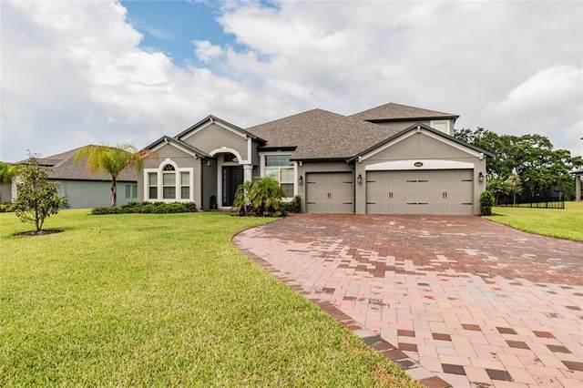2121 Pickerelweed Court, Apopka, FL 32703 (MLS #O5949498) :: Armel Real Estate