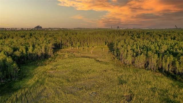 908 Hidden Palms Drive, Davenport, FL 33897 (MLS #O5949548) :: CGY Realty