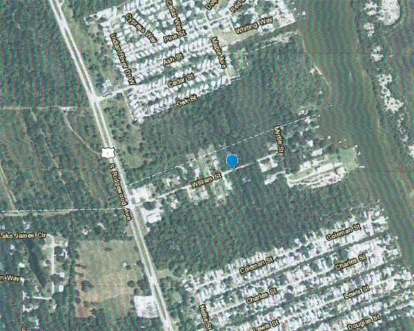 William Street, Edgewater, FL 32141 (MLS #O5949578) :: Your Florida House Team