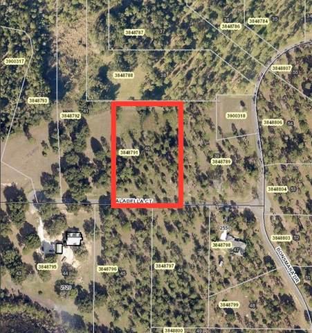 Falabella Court, Groveland, FL 34736 (MLS #O5949593) :: Griffin Group