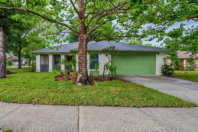 1013 Black Willow Drive, Oviedo, FL 32765 (MLS #O5949749) :: Florida Life Real Estate Group