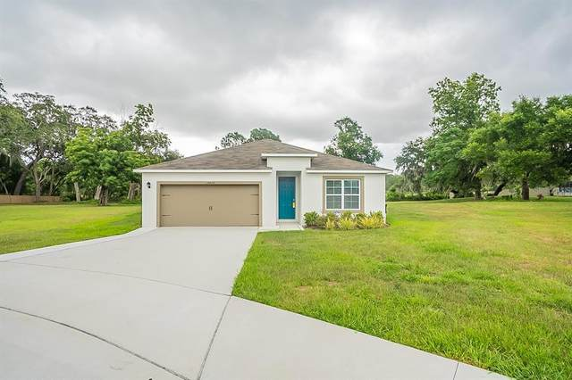 10612 Bronze Leaf Court, Leesburg, FL 34788 (MLS #O5949768) :: Everlane Realty