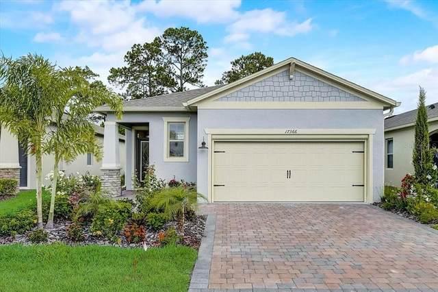 17366 Blazing Star Circle, Clermont, FL 34714 (MLS #O5949976) :: Bustamante Real Estate