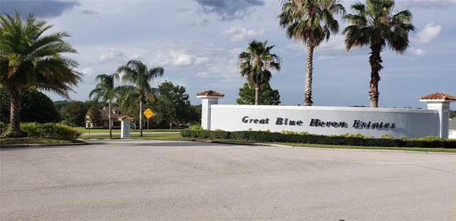 18307 Great Blue Heron Drive, Groveland, FL 34736 (MLS #O5950180) :: The Robertson Real Estate Group