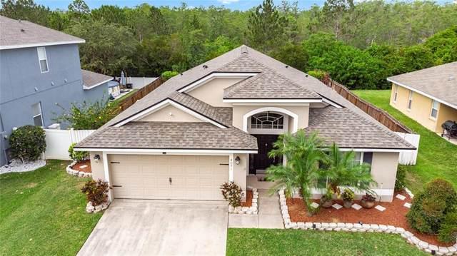 4081 Longworth Loop, Kissimmee, FL 34744 (MLS #O5950192) :: Baird Realty Group