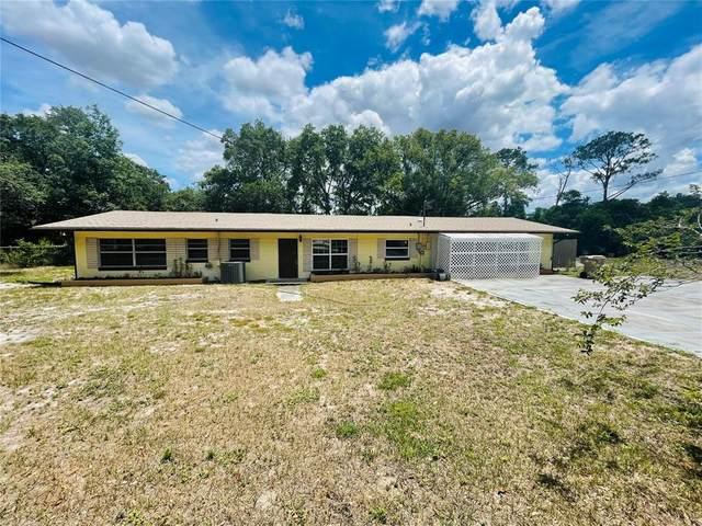 12320 Basin St, Clermont, FL 34715 (MLS #O5950214) :: Zarghami Group
