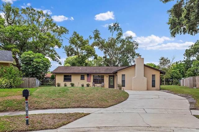 3706 Condel Drive, Orlando, FL 32812 (MLS #O5950265) :: Your Florida House Team