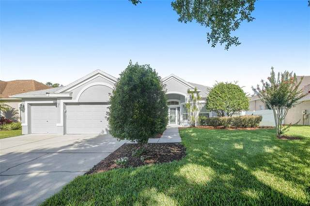 2742 Durant Trails Boulevard, Dover, FL 33527 (MLS #O5950353) :: Zarghami Group