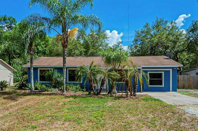 1076 Springbank Avenue, Orange City, FL 32763 (MLS #O5950451) :: Armel Real Estate