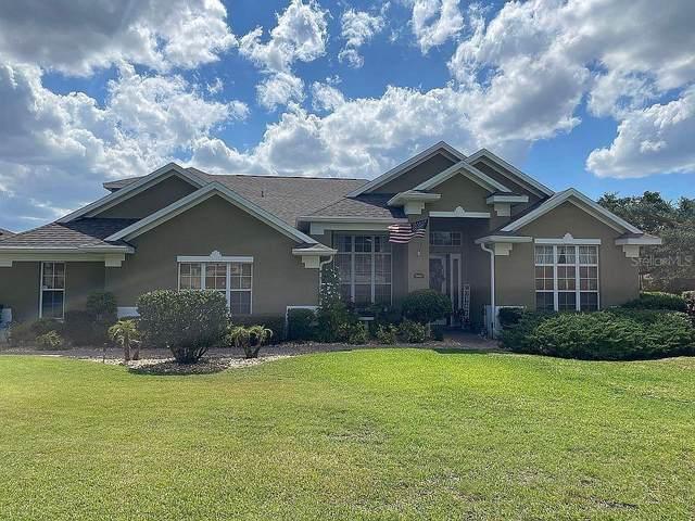 2400 Prairie View Drive, Winter Garden, FL 34787 (MLS #O5950496) :: Everlane Realty