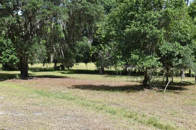 5107 Lazy Creek Court, Lakeland, FL 33811 (MLS #O5950515) :: Your Florida House Team