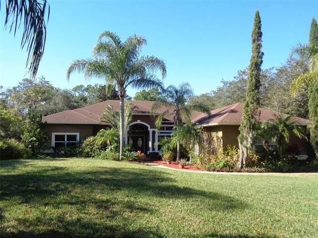 12124 Rambling Oak Boulevard, Orlando, FL 32832 (MLS #O5950577) :: The Light Team