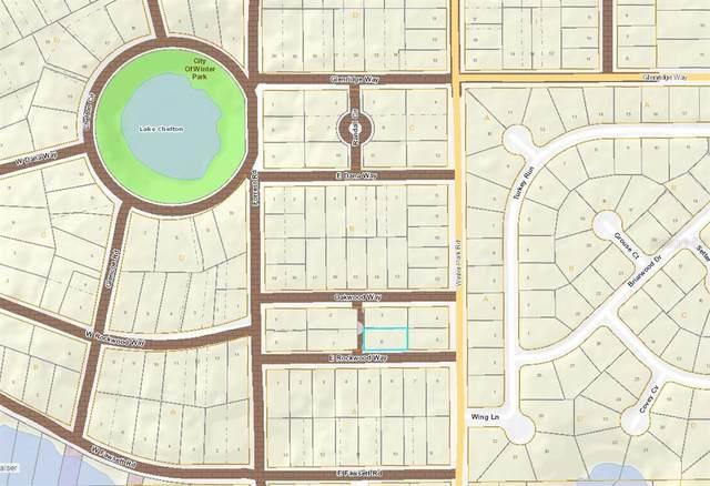 205 E Rockwood Way, Winter Park, FL 32789 (MLS #O5950692) :: CGY Realty