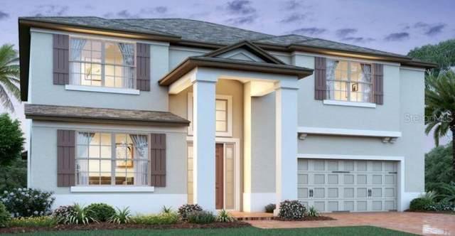 2501 Scenic Edge Way, Oviedo, FL 32765 (MLS #O5950726) :: Bustamante Real Estate