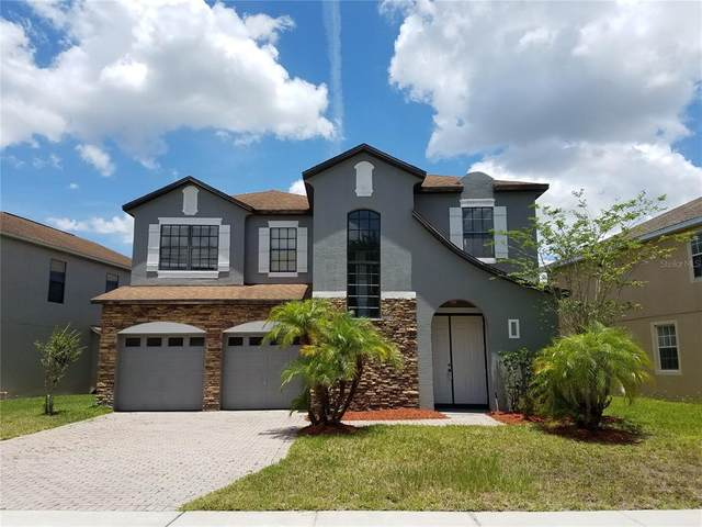 10041 Lake District Lane, Orlando, FL 32832 (MLS #O5950886) :: The Light Team