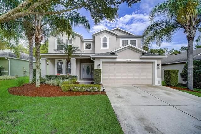 5536 Ansley Way, Mount Dora, FL 32757 (MLS #O5950898) :: GO Realty