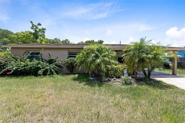 8114 Sun Vista Way, Orlando, FL 32822 (MLS #O5950929) :: Godwin Realty Group