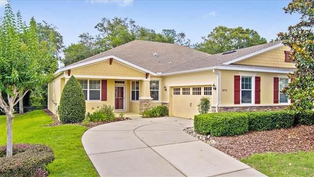 30534 Lipizzan Terrace, Mount Dora, FL 32757 (MLS #O5950961) :: Everlane Realty