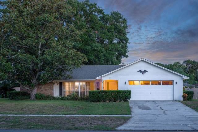 3220 Stratford Lane, Mount Dora, FL 32757 (MLS #O5951042) :: Everlane Realty