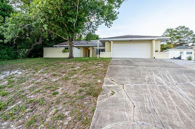 664 E Goodrich Drive, Deltona, FL 32725 (MLS #O5951109) :: Zarghami Group
