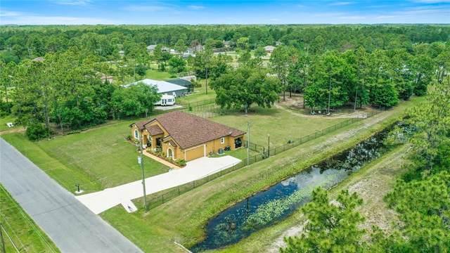 20205 Ralston Street, Orlando, FL 32833 (MLS #O5951188) :: Everlane Realty