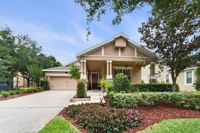 4827 Flint Road, Windermere, FL 34786 (MLS #O5951206) :: Stellar Home Sales