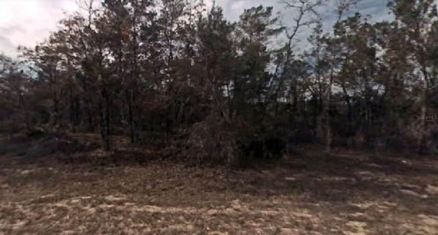 Fisher Trail, Ocklawaha, FL 32179 (MLS #O5951214) :: Everlane Realty