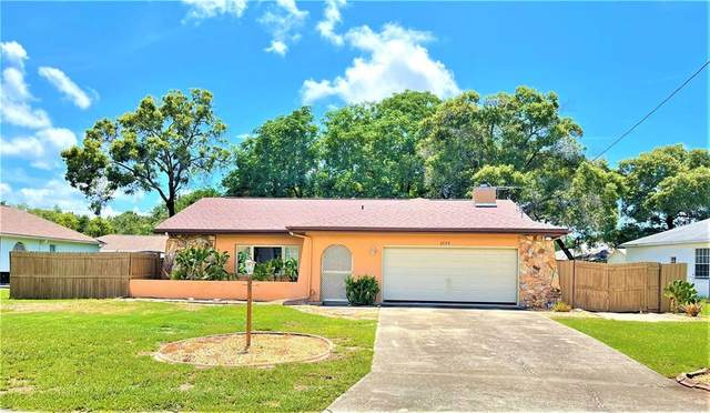 3135 Mandrell Avenue, Spring Hill, FL 34608 (MLS #O5951227) :: The Price Group