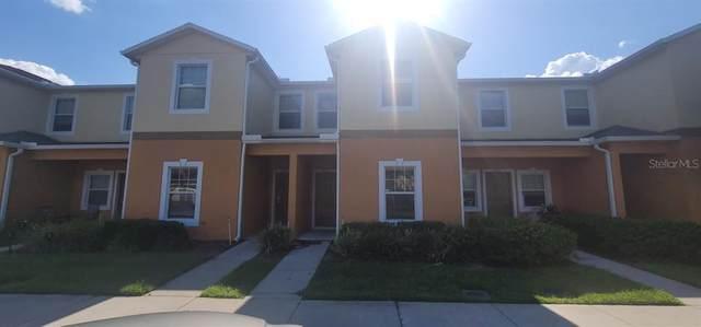 4011 Winding Vine Drive, Lakeland, FL 33812 (MLS #O5951334) :: The Light Team