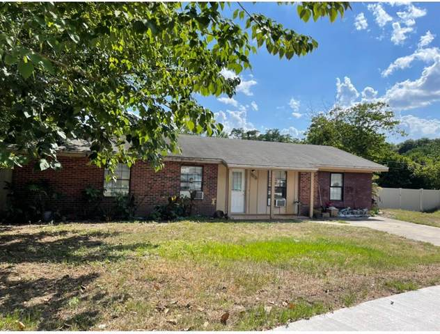 9102 Ava Lake Drive, Orlando, FL 32810 (MLS #O5951344) :: Griffin Group