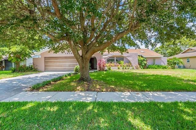 1310 W Redbud Street, Plant City, FL 33563 (MLS #O5951352) :: Zarghami Group