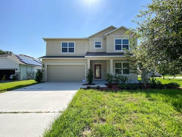 3669 Pelock Drive, Apopka, FL 32703 (MLS #O5951372) :: Zarghami Group