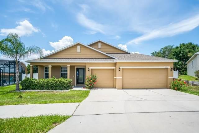 1375 Water Willow Drive, Groveland, FL 34736 (MLS #O5951396) :: Zarghami Group