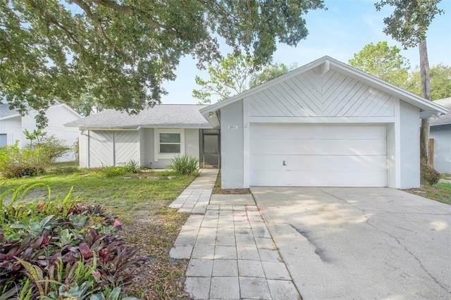 2707 Lakeville Drive, Tampa, FL 33618 (MLS #O5951410) :: Delgado Home Team at Keller Williams