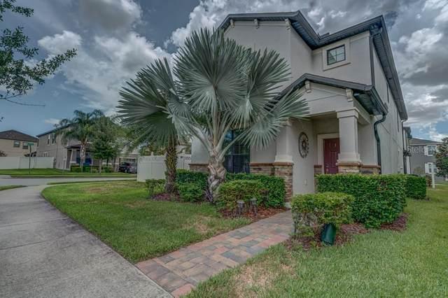 7481 Fairgrove Avenue, Windermere, FL 34786 (MLS #O5951451) :: Your Florida House Team