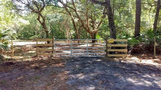 S County Road 13, Orlando, FL 32833 (MLS #O5951514) :: The Light Team
