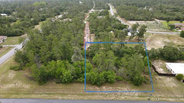 Sw 36Th Ave Rd, Ocala, FL 34473 (MLS #O5951527) :: The Hustle and Heart Group