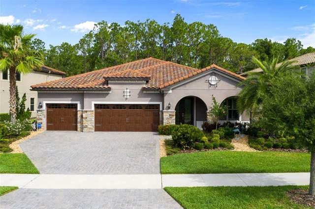 11728 Savona Way, Orlando, FL 32827 (MLS #O5951557) :: Zarghami Group