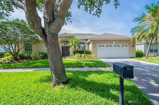 3601 Half Moon Drive, Orlando, FL 32812 (MLS #O5951565) :: Your Florida House Team