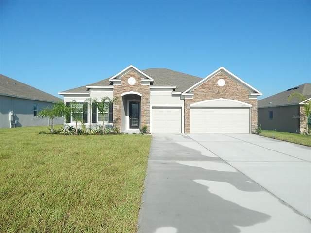 10275 Harmony Ridge Way, Clermont, FL 34711 (MLS #O5951657) :: Bustamante Real Estate