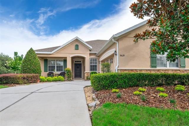30620 Lipizzan Terrace, Mount Dora, FL 32757 (MLS #O5951712) :: Armel Real Estate