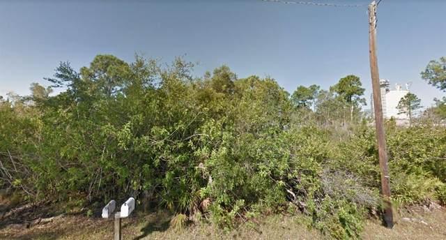12241 Estrella Boulevard, Punta Gorda, FL 33955 (MLS #O5951749) :: Team Buky