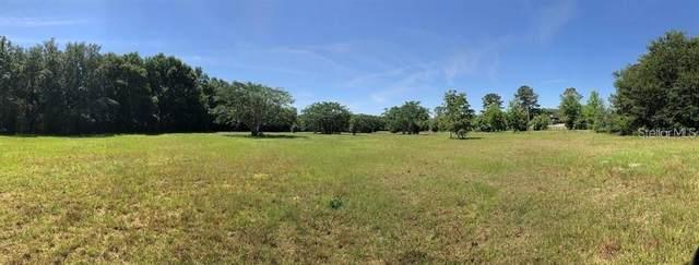 3059 Carmona Road, Apopka, FL 32712 (MLS #O5951793) :: Your Florida House Team