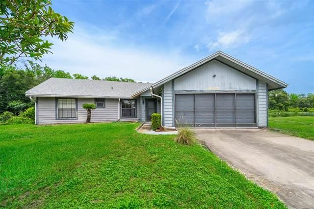 26705 Bimini Drive, Tavares, FL 32778 (MLS #O5951817) :: GO Realty