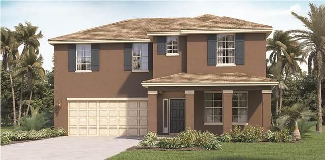 9590 Black Walnut Drive, Groveland, FL 34736 (MLS #O5951823) :: Griffin Group
