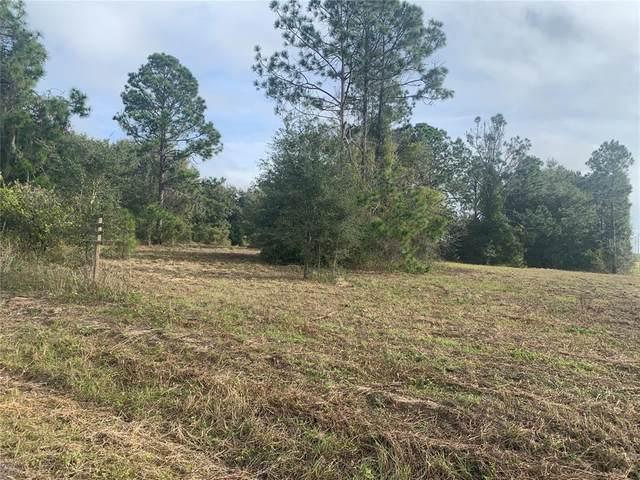 N Cherry Lake Groves Road, Groveland, FL 34736 (MLS #O5951990) :: Expert Advisors Group