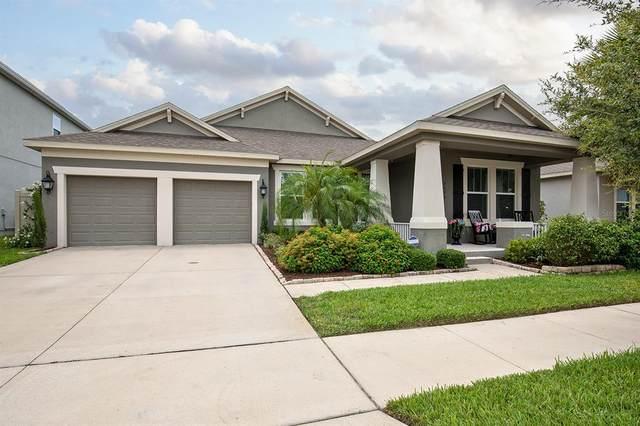 5693 Mangrove Cove Avenue, Winter Garden, FL 34787 (MLS #O5952009) :: MavRealty
