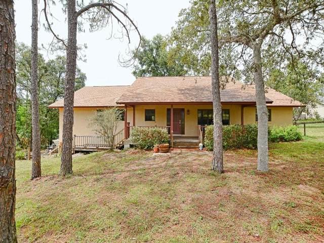 20515 Bill Collins Road, Eustis, FL 32736 (MLS #O5952072) :: Frankenstein Home Team