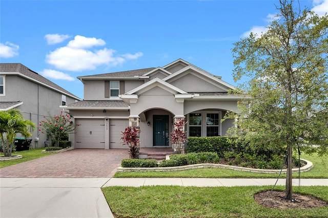15636 Kinnow Mandarin Lane, Winter Garden, FL 34787 (MLS #O5952155) :: MavRealty